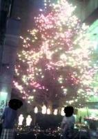 ミキモト クリスマスツリー.jpg